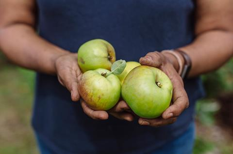 A woman holds green apples.