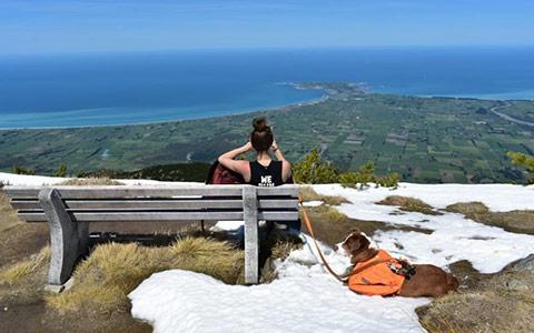 Mt. Fyffe Summit.