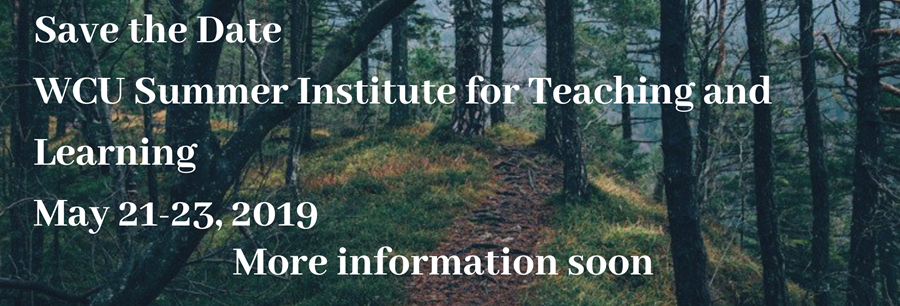 save the date for the Summer Institute - May 21-23, 2019