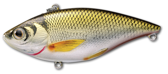 Golden Shiner Rattlebait