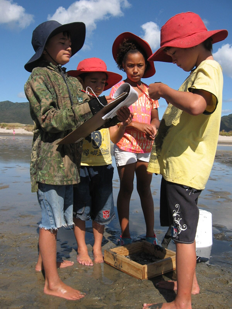 Protecting our Estuaries Resource