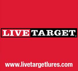 LiveTarget