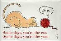 "This is a joke with a sideview of a orange cartoon cat staring at a ball of red yarn. The cat's tail is straight up and the ball of yarn has a bubble stating ""uh oh.""  The message beneath the cartoon is ""Some days, you're the cat. Some days, you're the yarn."""