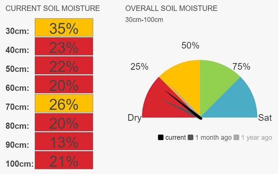 Elmore speedo current soil moisture 21%