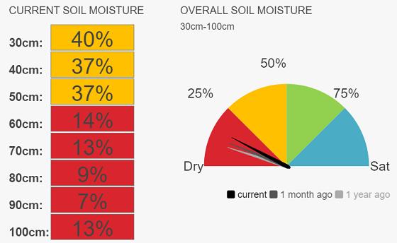 Lk Bolac (pasture) soil moisture levels at 20 per cent