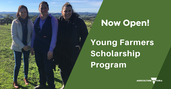 infograph reads Now Open! Young Farmers Scholarship Program.