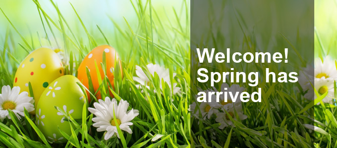 Welcome! Spring has arrived