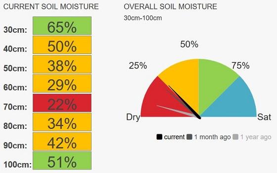 Ouyen soil moisture is currently 25 percent.
