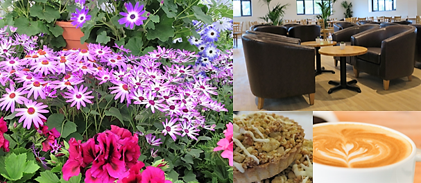 Arrington Garden Centre and Cafe - we look forward to welcoming you