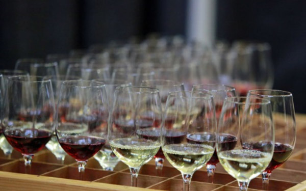 SF Chronicle Wine Competition Public Tasting