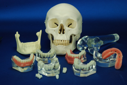 Advanced Dental and Orthopedic Models Built Using High-Performance Polyurethanes