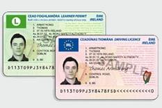 New driver license