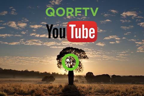 QORFTV