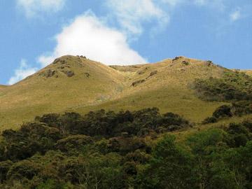 Chinguela Hill. © Naturaleza y Cultura Peru.