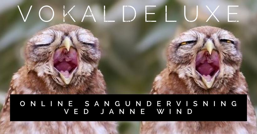 VokalDeLuxe på Facebook