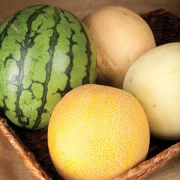 Four varieties of melons in a basket