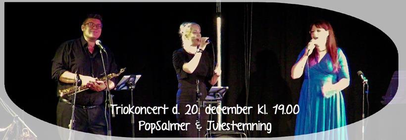 fra 2016 julekoncert med PopSalmer trio