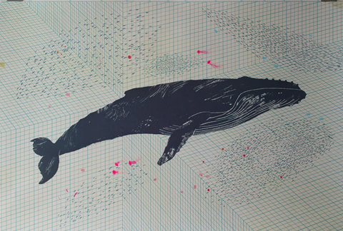 Gerry Turley Whale Poster