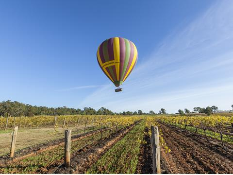 The Hunter Valley