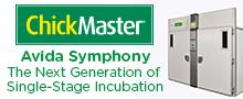 ChickMaster - Avidia Symphony