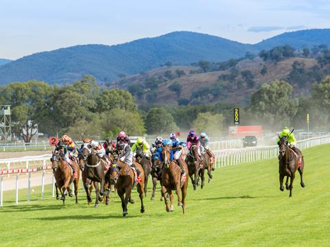 Albury Gold Cup Carnival