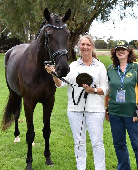 Highest scoring AWHA registered female horse in the Led classes at PSI Dressage & Jumping with the Stars 2019, Hollands Bend Shangri La who was presented by Jane Bartram (breeder) and is owned by Judy Smith.