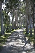 Cruden Farm on Victoria's Mornington Peninsula